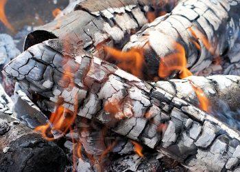 Holzasche entsorgen (Tipps) | Asche in Biotonne oder Restmüll?