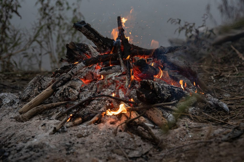 Feuer Holz Asche Glut