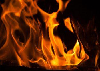 Brennwert von Braunkohle, Steinkohle & Holzkohle im Vergleich